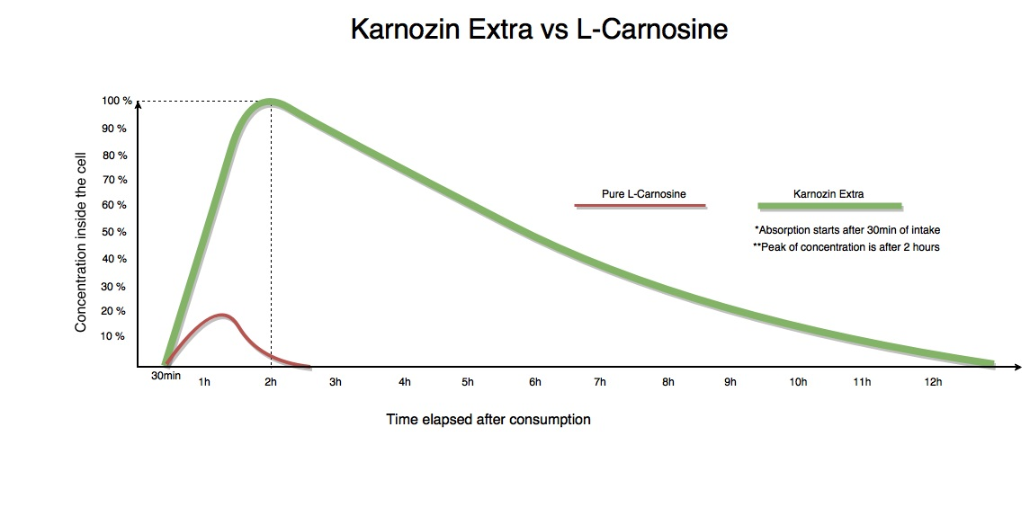 Karnozin Extra vs L-Carnosine